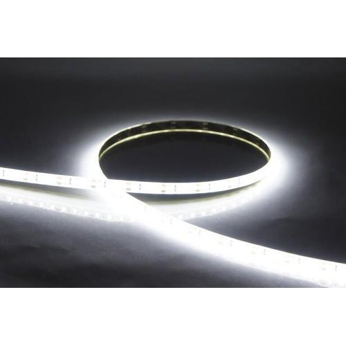 Лента 2216 300 LED IP20 10-12 Лм белая 6500k 24V